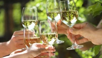 alkohol-auswirkungen-koerper
